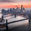Study Trip to New York City 2019
